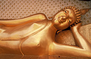 Franck Metois - The reclining Buddha