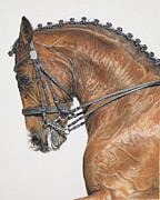Equine Pastels Posters - The Red Horse Poster by Terry Kirkland Cook