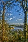Joe Cashin - The River Suir
