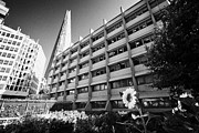 City Garden Prints - the shard building towering over melior street community garden London England UK Print by Joe Fox