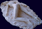 Sculpture Reliefs Posters - The Sleeping Pompeiiana Poster by Azul Fam