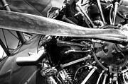 Stearman Photo Prints - The Stearman Jacobs Aircraft Engine Print by David Patterson