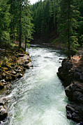 Umpqua River Framed Prints - The Umpqua 2 Framed Print by Todd L Thomas