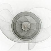Stefan Kuhn - The Wheel