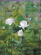 Lilly Pond Painting Prints - The White Lotus Print by Uma Swaminathan