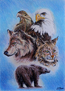 Eyes Mixed Media Originals - The Wildlife Collection 1  by Andrew Read