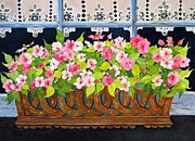 Mary Ellen  Mueller-Legault - The Window Box
