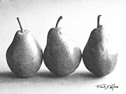 Pencil Drawing Posters - Three Pears Poster by Frank Wilson