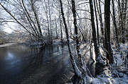 Snowy Stream Prints - Through the Trees Print by Svetlana Sewell