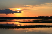 Tidal Marsh Wilmington Nc Print by Michael Weeks