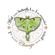 To Accept Change With Grace Print by Amy Kirkpatrick