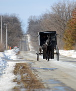 Amish Buggy Photos - To Market by Linda Mishler
