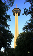 Tower Of The Americas Photos - Tower of the Americas by Glenn Stuart