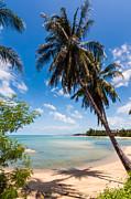 Fototrav Print - Tropical Beach Koh Samui Thailand