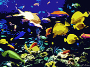 Tropical Art - Tropical fish by Allen Glass