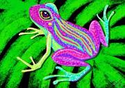 Nick Gustafson - Tropical Frog