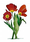 Nan Wright - Tulip Trio