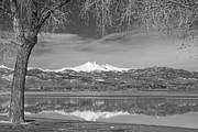 Mount Meeker Posters - Twin Peaks Longs and Meeker Lake Reflection BW Poster by James Bo Insogna