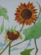 Paula Peltier - Two Sunflowers