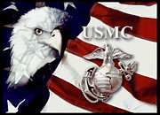 Bald Eagle Pastels Metal Prints - Usmc Metal Print by Woolman Brothers