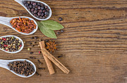 Palatia Photo - Various spices in...