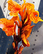 Metal Sheet Prints - Ventura Flower Print by Ron Regalado