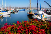 Lynn Bauer Prints - Ventura Harbor Print by Lynn Bauer