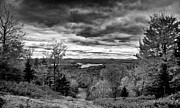 Fir Trees Prints - View From McCauley Mountain Print by David Patterson