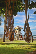 Banyan Tree Framed Prints - View from Under the Banyan Tree Framed Print by Cheryl Young