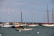 Charlene Reinauer - Vineyard Haven Harbor