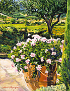 Gardenscape Paintings - Vineyards Of Provence by  David Lloyd Glover