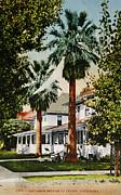 Patricia Hofmeester - Vintage postcard of wealthy neighbourhood in Fresno Calfiornia
