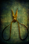 Life-threatening Metal Prints - Vintage Scissors Metal Print by Stephanie Frey