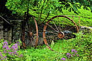 Old Mill Of Guilford Prints - Vintage Wagon Wheel Gate Print by Sandi OReilly