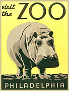 Hippopotamus Digital Art Framed Prints - Visit The Zoo Framed Print by Unknown