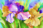 Abstract Iris Posters - Voices Of Spring Poster by Zeana Romanovna