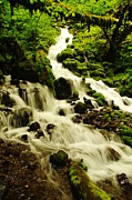 Creeks Prints - Wahkeena Creek Print by Jeff  Swan