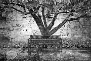 Benches Prints - Waiting for You Print by Debra and Dave Vanderlaan