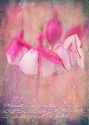 Ballerinas Posters - Waltz of the Flowers Poster by Judi Bagwell