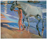 The Horse Metal Prints - Washing the Horse Metal Print by Joaquin Sorolla Y Bastida