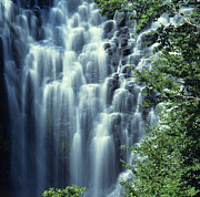 Bernard Jaubert - Waterfall. Auvergne....