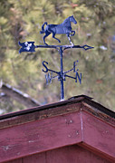 Juls Adams Framed Prints - Weather Vane Framed Print by Juls Adams