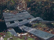 Jim Vansant - Weathered Footbridge