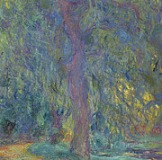 Willow Tree Posters - Weeping Willow Poster by Claude Monet