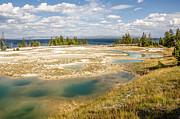 Sue Smith - West Thumb Geyser Basin
