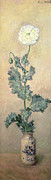 Blooming Paintings - White Poppy by Claude Monet