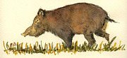 Wild Boar Paintings - Wild pig by Juan  Bosco