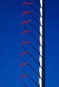 Flagpole Photos - Wind Arrows by Rona Black