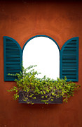 Basket Pot Prints - Window On Orange Wall  Print by Niphon Chanthana
