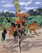 Wine Country Print by Reba Baptist